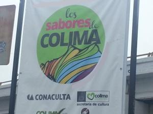 Física del Sabor en Colima